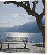 Bench And Tree On An Alpine Lake Wood Print
