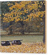 Bench In The Autumn Landscape Wood Print
