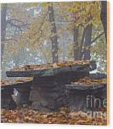 Benches And Table In Autumn Wood Print