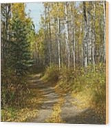 Bend In The Trail Wood Print