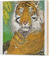 Bengal Tiger With Green Eyes Wood Print by Jack Pumphrey