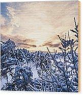 Bergen Winter Wood Print