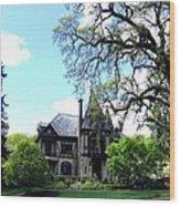 Beringer's Rhine House Wood Print