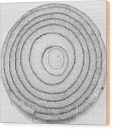 Bermuda Onion Spiral Bw Wood Print