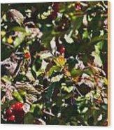 Berry Picking Wood Print