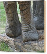 Best Foot Forward Wood Print by Joanne Kocwin