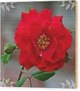 Betty's Red Rose Wood Print