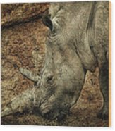Between A Rock And A Hard Place Wood Print by Fiona Messenger
