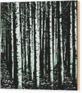 Beyond The Trees Wood Print by Terrie Taylor