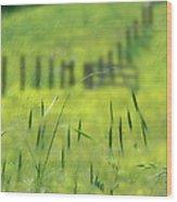 Beyond The Weeds Wood Print