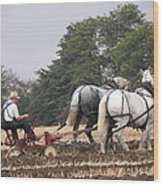 Bickleshire Farm Team Wood Print