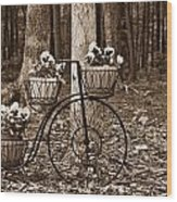 Bicycle Built For Three Wood Print