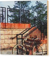 Bicycle By Train Station Wood Print