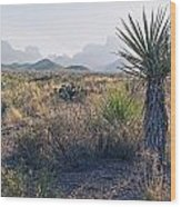 Big Bend National Park 2 Wood Print