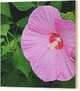 Big Bold Pink Beauty Wood Print