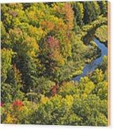 Big Carp River 3 Wood Print