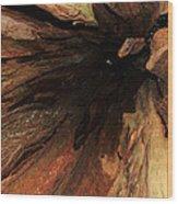Big Cedar Wood Print