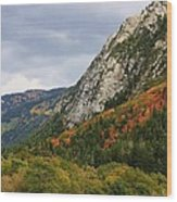 Big Cottonwood Canyon 2 Wood Print