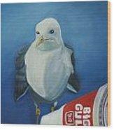 Big Gull Wood Print by Amy Reisland-Speer
