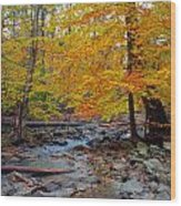 Big Hunting Creek Down Stream From Cunningham Falls Wood Print