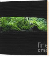 Big Mouth Cave, Tennessee Wood Print