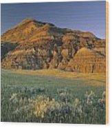 Big Muddy Badlands, Saskatchewan, Canada Wood Print