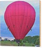 Big Pink  Wood Print