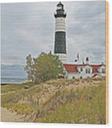 Big Sable Lighthouse Wood Print