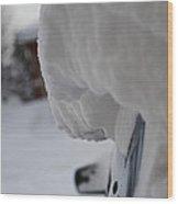 Big Snowfall Wood Print