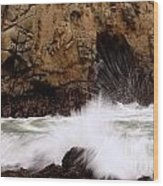 Big Sur 1 Wood Print