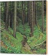 Big-sur-t8-3 Wood Print