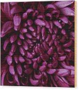 Big Wet Purple Wood Print
