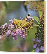 Big Yellow Grasshopper Wood Print