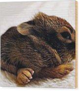 Bigfoot Wood Print
