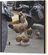 Biker Chix Wood Print