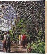 Bio Dome Wood Print