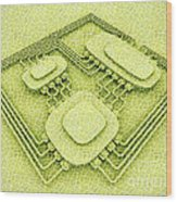 Biotech Wood Print by Igor Kislev