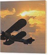 Biplane At Sunset Wood Print