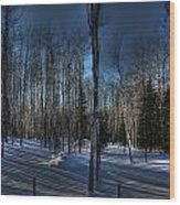 Birch Shadows Wood Print