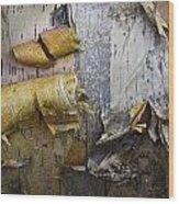 Birch Tree Bark No.0863 Wood Print