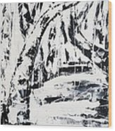 Birch Trees By The Brook Wood Print