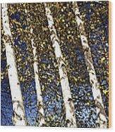 Birch Trees In Fall Wood Print