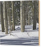 Birch Trees In Snow Wood Print