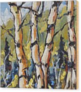 Birches Aglow By Prankearts Wood Print