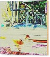 Bird Bath Wood Print by YoMamaBird Rhonda