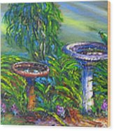 Bird Baths Wood Print