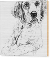 Bird Dog Wood Print