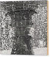 Bird Fountain Of Tears Wood Print