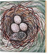 Bird Nest And A Feather Wood Print