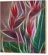 Bird Of Paradise Fractal Wood Print